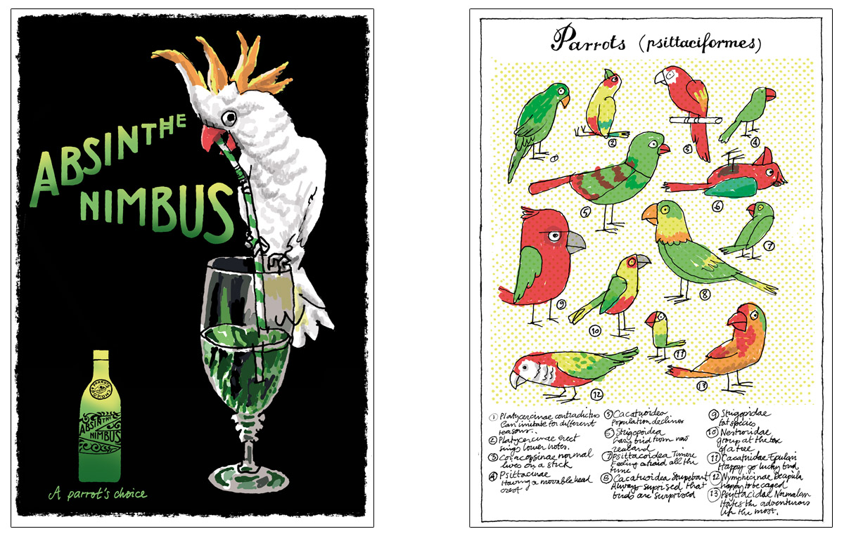 The Daily Parrot Newspaper_postcards